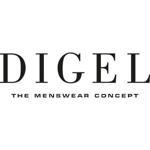 Logo Digel